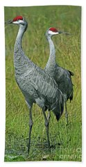Sandhill Cranes He And She Beach Towel