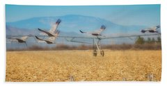 Sandhill Cranes In Flight Beach Towel