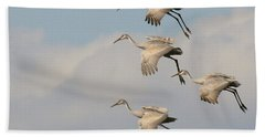 Sandhill Cranes Beach Sheet by Myrna Bradshaw