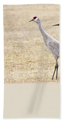 Beach Towel featuring the photograph Sandhill Cranes Of Montana by Jennie Marie Schell