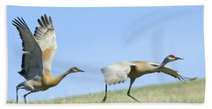 Sandhill Cranes Taking Flight Beach Towel
