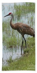 Sandhill In The Marsh Beach Towel