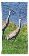 Sandhill Pair Beach Towel