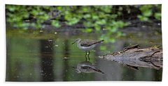 Beach Towel featuring the photograph Sandpiper In The Smokies II by Douglas Stucky