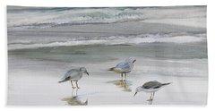 Sandpipers Beach Sheet