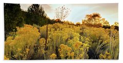 Beach Towel featuring the photograph Santa Fe Magic by Stephen Anderson