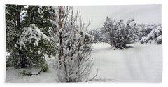 Santa Fe Snowstorm 2017 Beach Towel by Joseph Frank Baraba