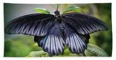 Sapphire Blue Swallowtail Butterfly Beach Sheet