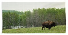 Saskatchewan Buffalo Beach Towel