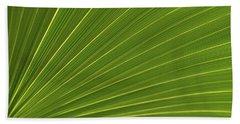 Saw Palmetto Detail Delray Beach Florida Beach Towel