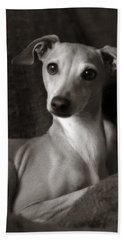 Say What Italian Greyhound Beach Towel by Angela Rath