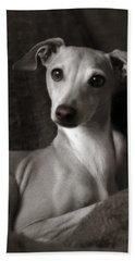 Say What Italian Greyhound Beach Towel