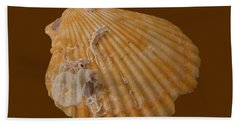 Scallop Shell With Guests Transparency Beach Towel