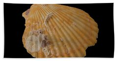 Scallop With Guests Beach Towel