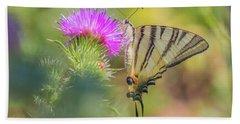 Scarce Swallowtail - Iphiclides Podalirius Beach Towel