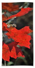 Scarlet Autumn Beach Towel