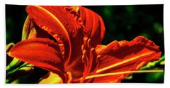Beach Towel featuring the photograph Scarlet Flower  by Joseph Hollingsworth
