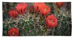 Beach Sheet featuring the photograph Scarlet Hedgehog Cactus  by Saija Lehtonen