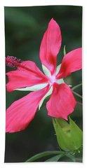 Scarlet Hibiscus #4 Beach Towel