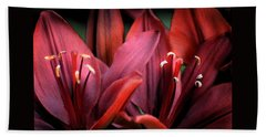 Scarlet Lilies Beach Sheet by Kathleen Stephens