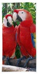 Scarlet Macaws Beach Towel