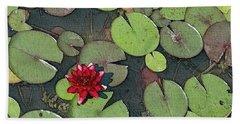 Scarlet Waterlily Beach Towel