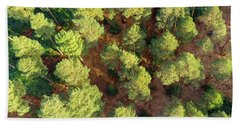 Scots Pines Beach Towel