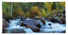 Beach Towel featuring the photograph Scott Gomer Creek At Guanella Pass by Marie Leslie