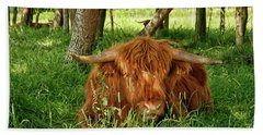 Beach Towel featuring the photograph Scottish Higland Cow by Patricia Hofmeester