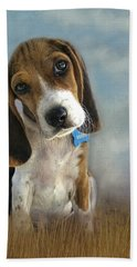 Beach Towel featuring the photograph Scout by Steven Richardson