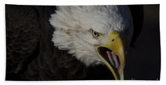 Screaming Eagle Beach Towel by Andrea Silies