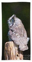 Screech Owl Profile Beach Sheet