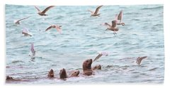 Sea Lions And Gulls - Herring Spawn Beach Towel by Peggy Collins