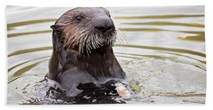 Sea Otter With Clam Beach Towel