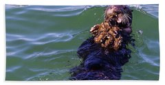 Sea Otter With Lunch Beach Sheet