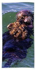 Beach Towel featuring the photograph Sea Otter With Lunch by Randy Bayne