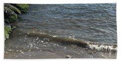 Sea Shadow Beach Towel