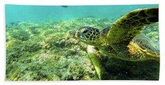 Sea Turtle #2 Beach Sheet