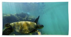 Beach Sheet featuring the photograph Sea Turtle #5 by Anthony Jones