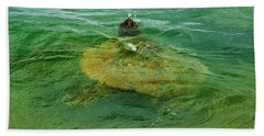 Beach Towel featuring the photograph Sea Turtle Up For Air by Craig Wood