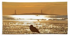 Seagull Admiring Thacher Island Gloucester Ma Good Harbor Beach Beach Towel