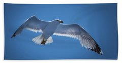 Beach Towel featuring the photograph Seagull by Davor Zerjav