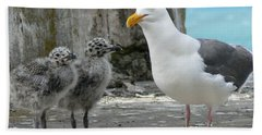Seagull Family Beach Towel by Laurel Powell