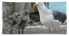Seagull Family Beach Towel