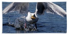 Beach Towel featuring the photograph Seagull Flight by Sue Harper