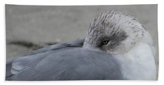 Seagull On The Beach Beach Towel