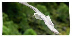 Seagull On The Fjord Beach Towel