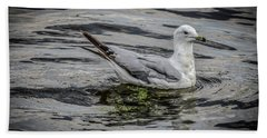 Beach Towel featuring the photograph Seagull On The River by Ray Congrove