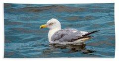 Seagull Beach Sheet