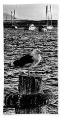 Seagull Perch, Black And White Beach Towel